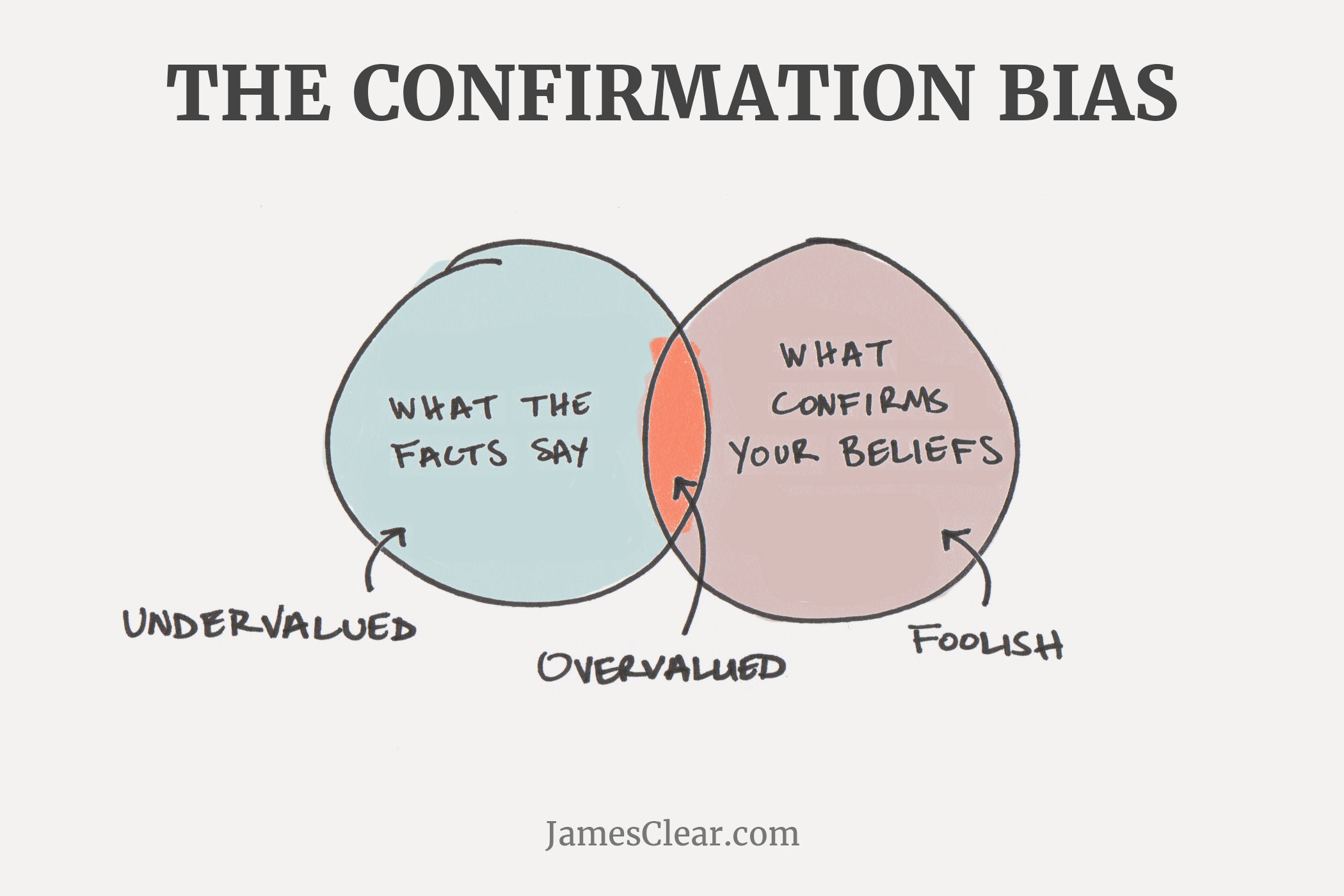 the confirmation bias image